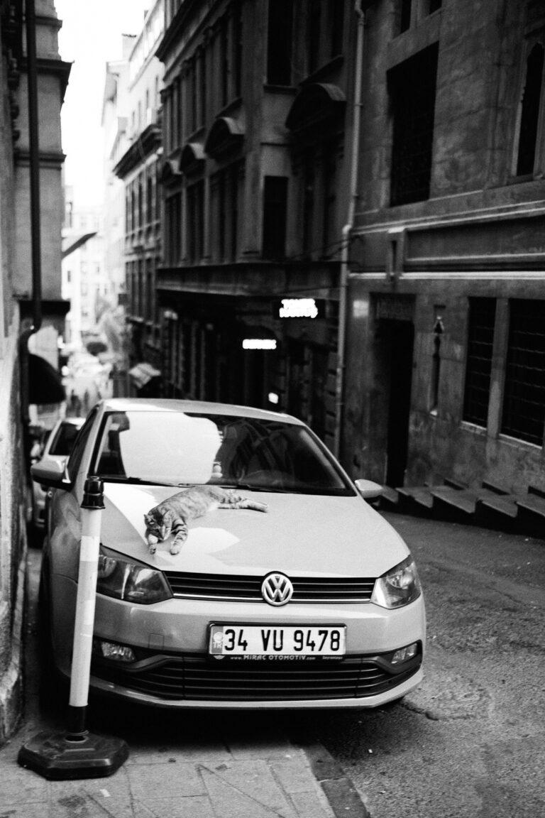 istanbul_bw_13